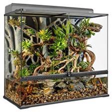 acuaterrarios para ranas