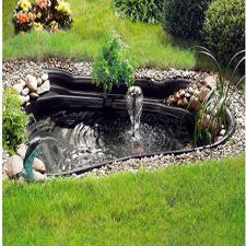 estanque para ranas